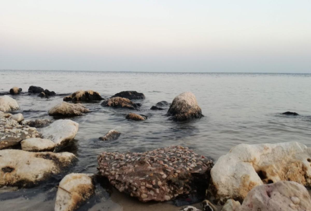 هاف مون الدمام افضل شاطئ لعام 2021 وجهات